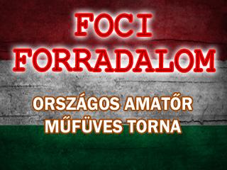 54de0159a608f_foci_forradalom_marc15_amator_torna_index